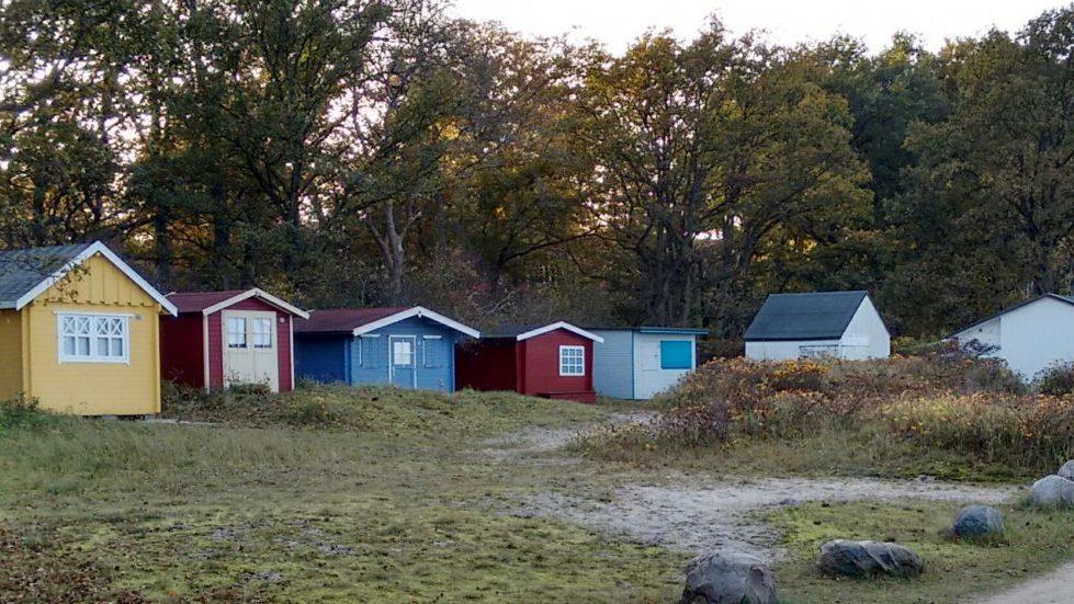 Les cabanes en bois de Hohwacht