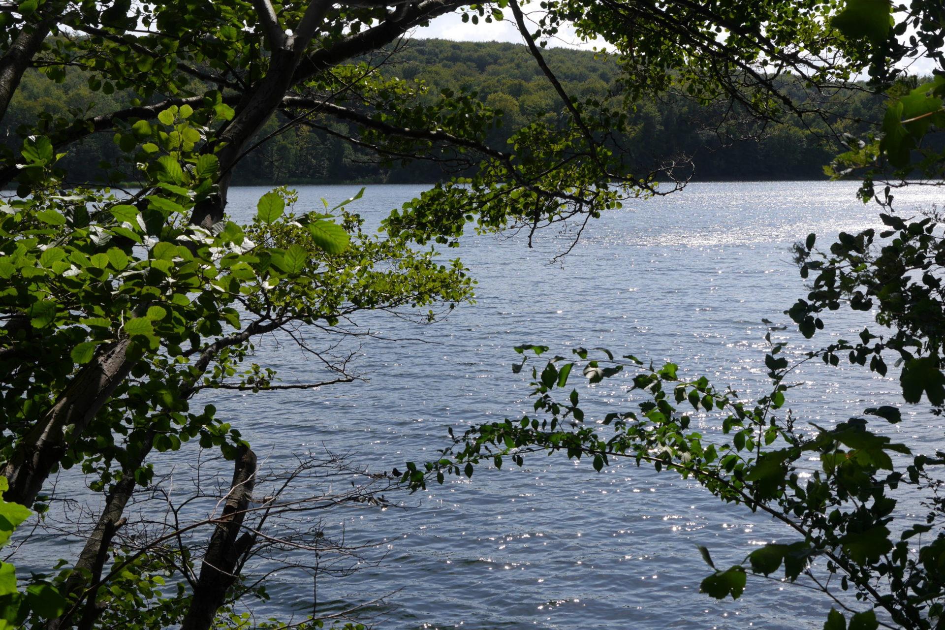 Quand un lac naît d'un amour déçu… L'histoire de l'Ukleisee