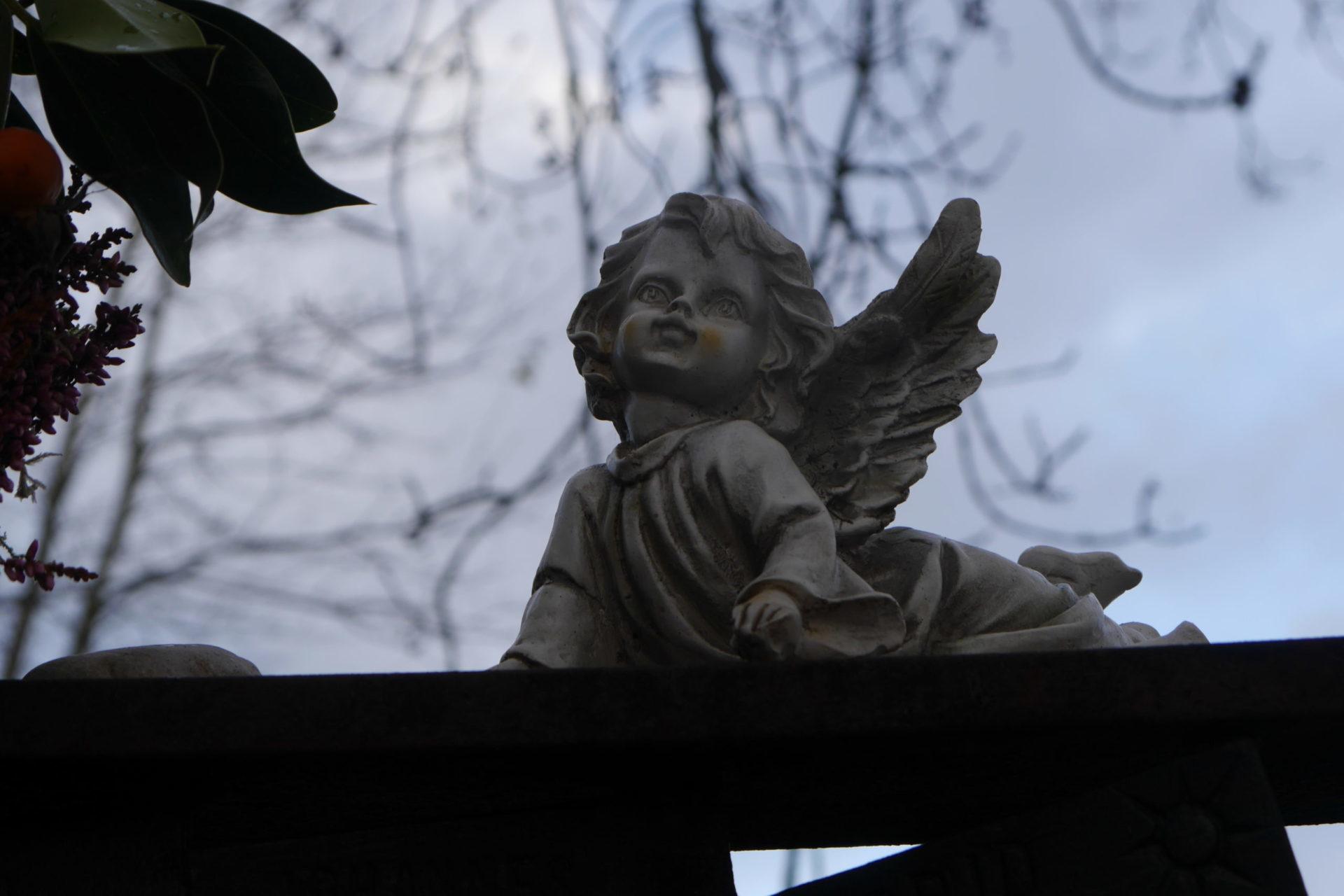 Neukirchen ou les anges de la falaise