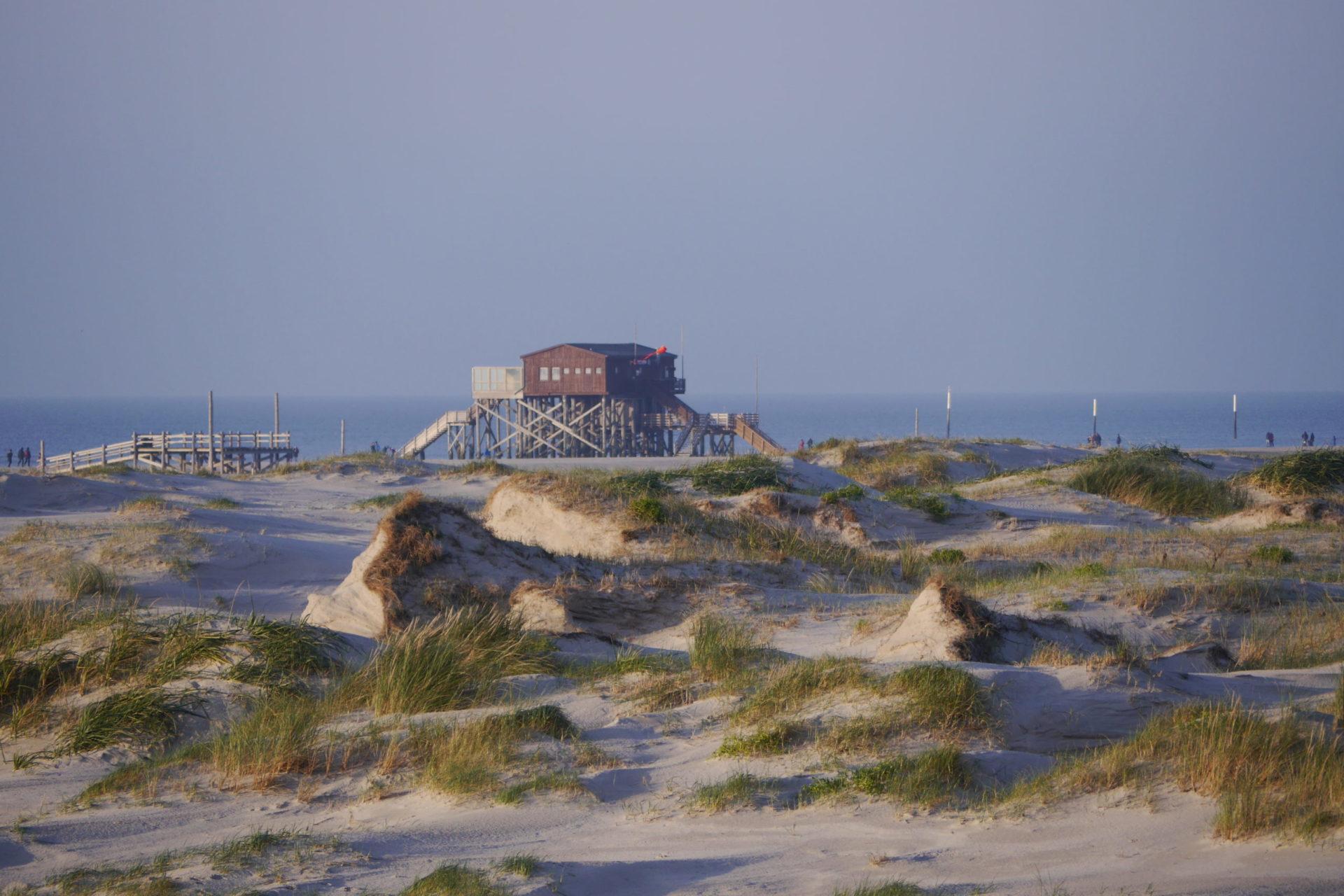 SPO – Là où les dunes commencent