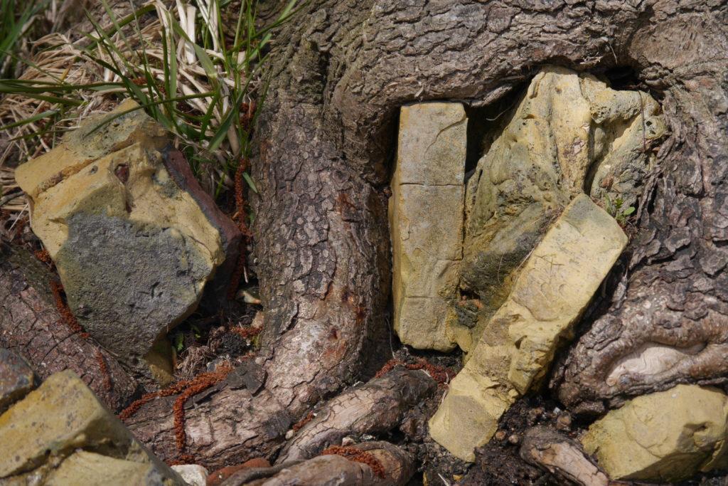 Entre Tetris et Playmobil — La briqueterie de Borgwedel