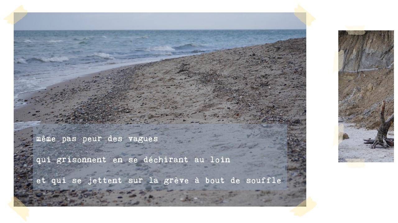 même pas peur des vagues  qui grisonnent en se déchirant au loin  et qui se jettent sur la grève à bout de souffle