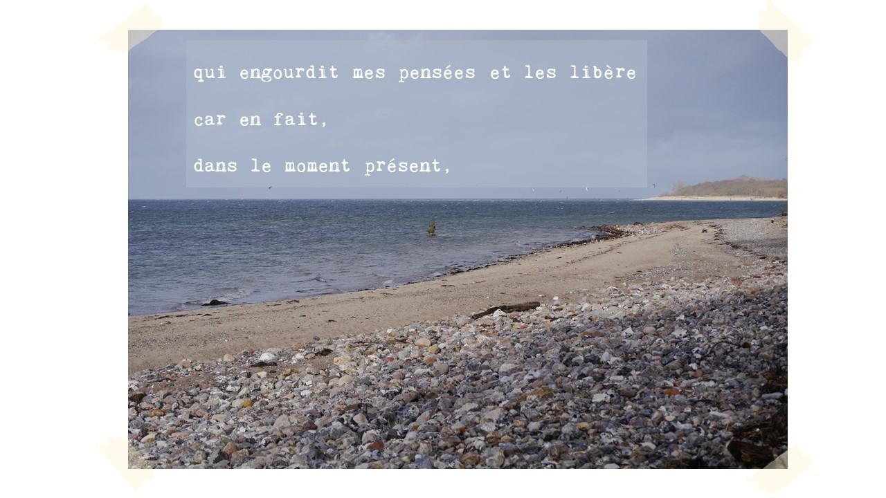qui engourdit mes pensées et les libère  car en fait, à bien y réfléchir,   dans le moment présent,